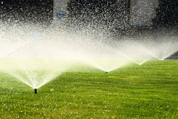 Bewässerungsanlage-Garten